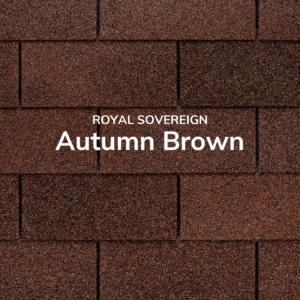Royal-Sovereign-Autumn-Brown